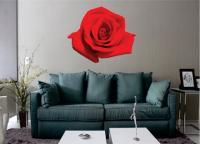 A Rosa - Arvores E Florais