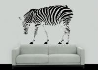 Zebra Vazada - Bichos