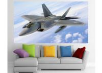 F 22 Raptor - Imagens Militares