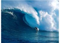 Hawaii (onda) - Pontos Turisticos
