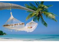 Palm Beach - Pontos Turisticos